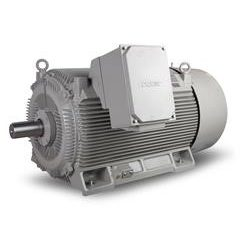 Speed of medium voltage motors