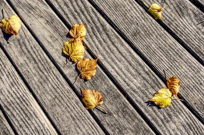 Farba na drevo exterier do vašej záhrady