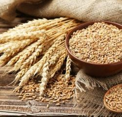 Pšenica v chlebe
